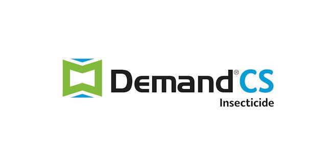 logo: Demand CS