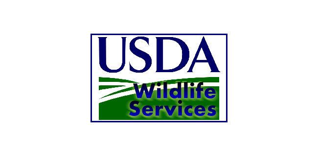 logo: USDA