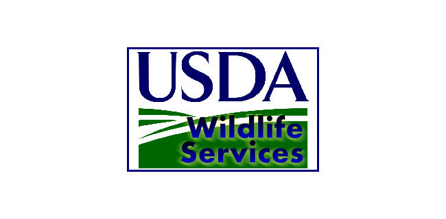 Npma Usda Define Urban Rodent Control Pest Management