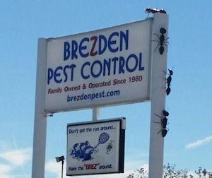 Photo Brezden Pest Control