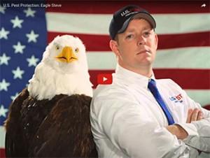 eagle-steve-us-pest