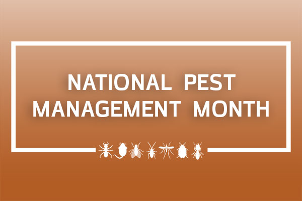 are you ready for national pest management month    pest