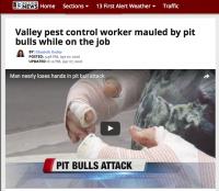 screenshot: 13 action news