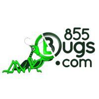 logo: 855bugs.com