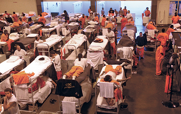 Bed Bugs In Prison