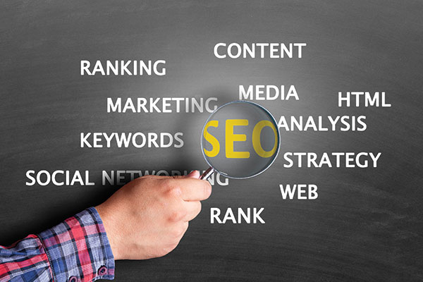 Q&A: SEO, new services and advertising ROI