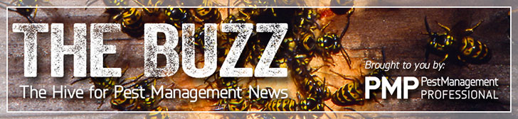 PMP Buzz Online