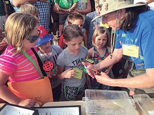 """Dr. Jones teaches students at the Ohio Pest Management Association's summer 2016 program, """"Discovering Insects."""" Photo: Dr. Susan Jones"""