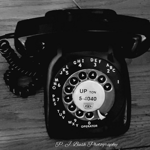 Bush phone