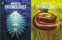 Image: American Entomologist
