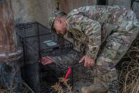 Becerra sets an an animal trap Oct. 27 at an undisclosed location in Southwest Asia. (U.S. Air Force photo by Staff Sgt. William Banton)