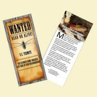 Termite Mailers