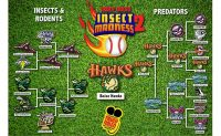 Insect Madness 2 bracket