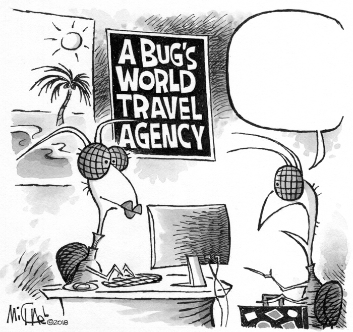A bug's world travel agency