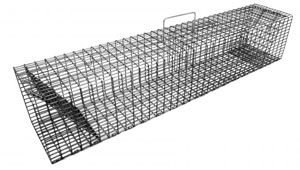 Comstock Cage