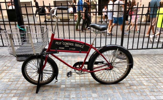 Rollins bike
