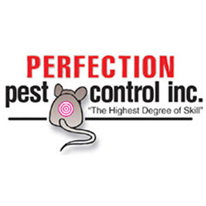 Photo: Perfection Pest