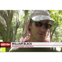 Guaranteed's William Black talks with ABC Local 10. PHOTO: WPLG VIA YOUTUBE