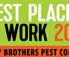 PHOTO: BRODY BROTHERS PEST CONTROL
