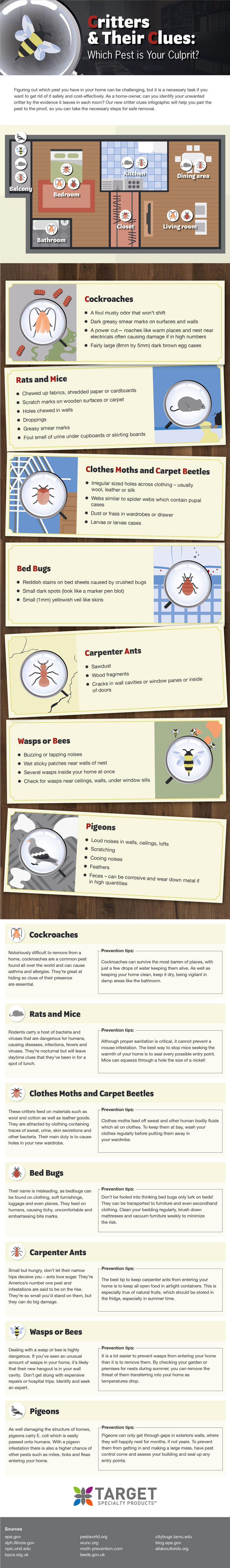 Target Specialty Products' Critter Clues infographic helps homeowners identify and prevent common pests. IMAGE: TARGET SPECIALTY PRODUCTS