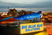 Photo: Big Blue Bug Solutions