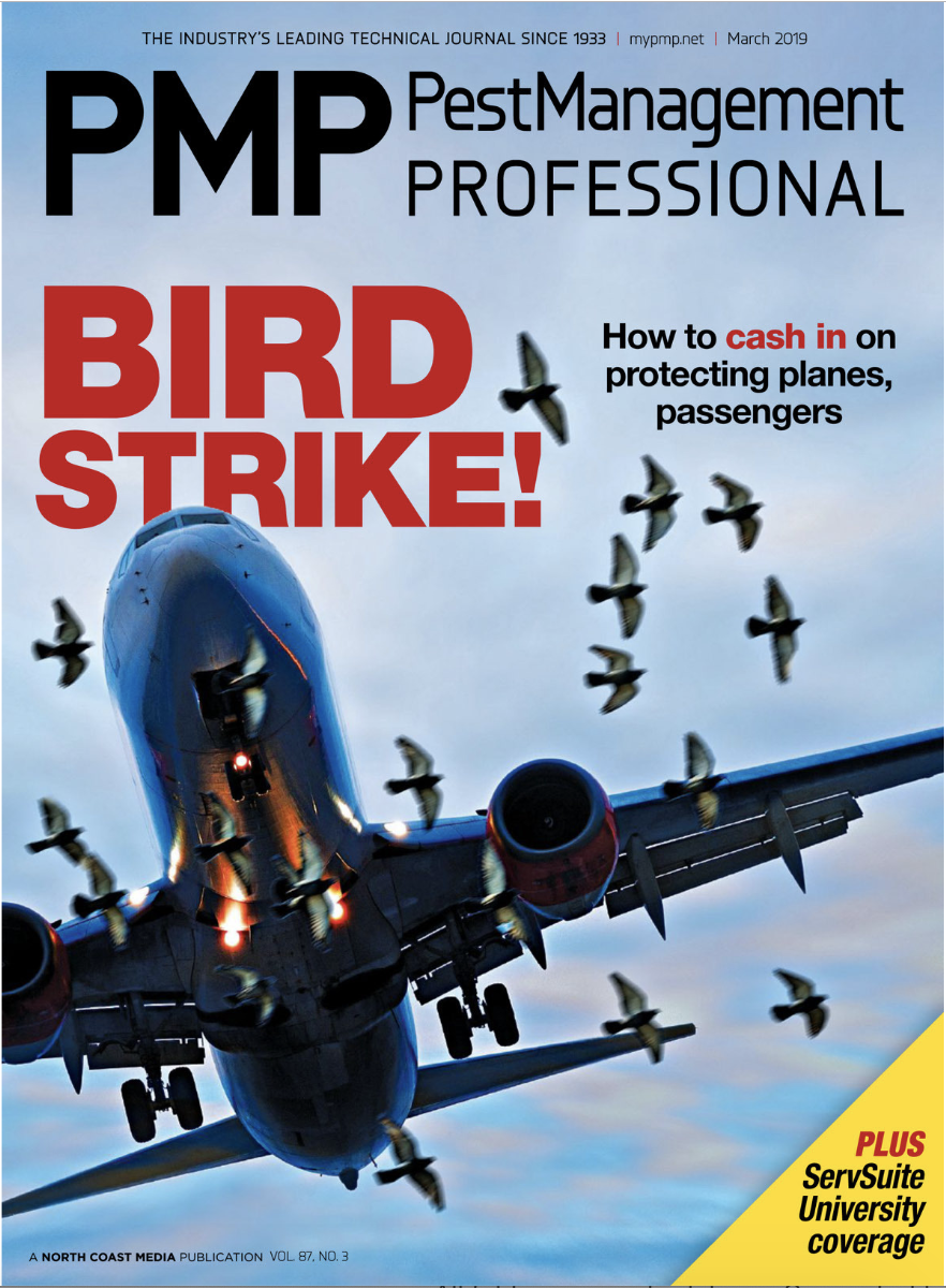 PMP MAR. 2019 COVER, PHOTO: ISTOCK.COM/OLASER