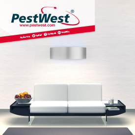 IMAGE: PESTWEST