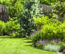 A flower garden in the backyard. iStock.com/SVproduction
