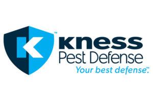 Logo: Kness