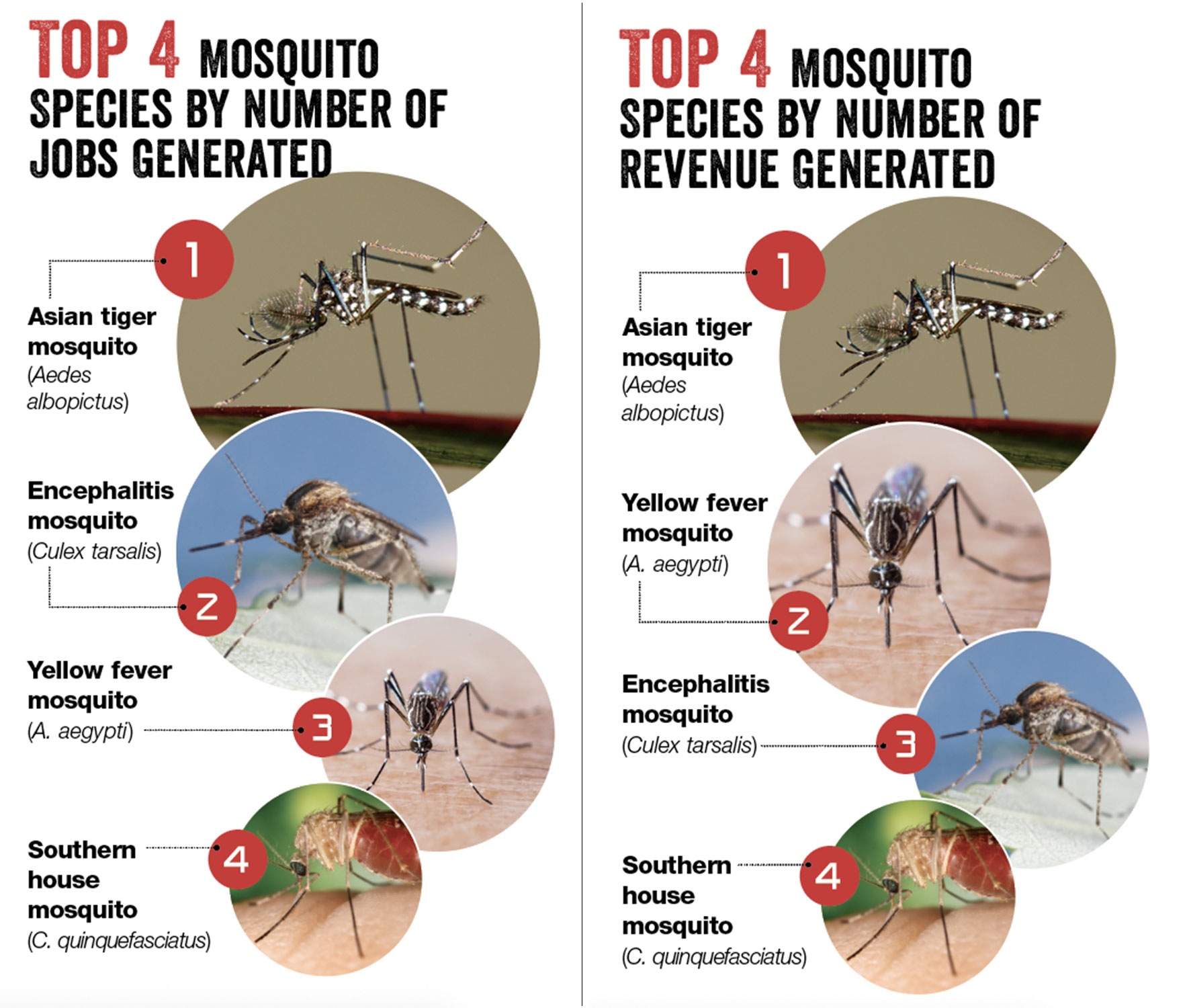 (PHOTOS: ISTOCK.COM/IMNATURE, TEPTONG; JOSEPH BURGER, BUGWOOD.ORG; CDC/JIM GATHANY) SOURCE: PMP Mosquito Management Survey Jan.-March 2019