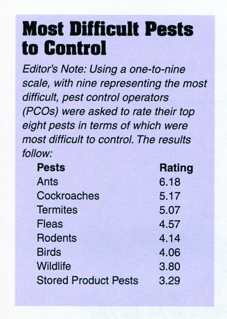 Most Difficult Pests to Control IMAGE: PMP ARCHIVES