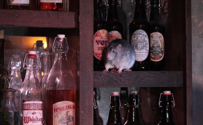Rat bar (PHOTO: THE SAN FRANCISCO DUNGEON)