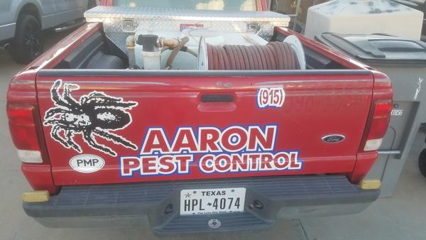 PHOTO: AARON PEST CONTROL, EL PASO, TX
