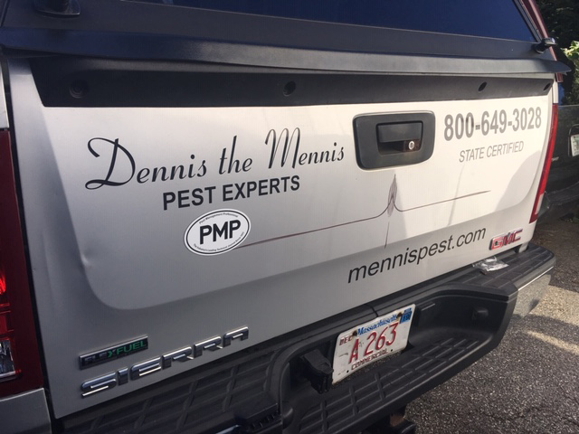 PHOTO: DENNIS THE MENNIS PEST EXPERTS