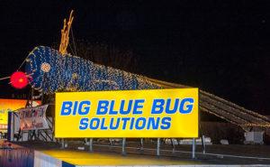 IMAGE: BIG BLUE BUG SOLUTIONS