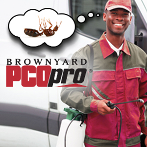 IMAGE: BROWNYARD INSURANCE