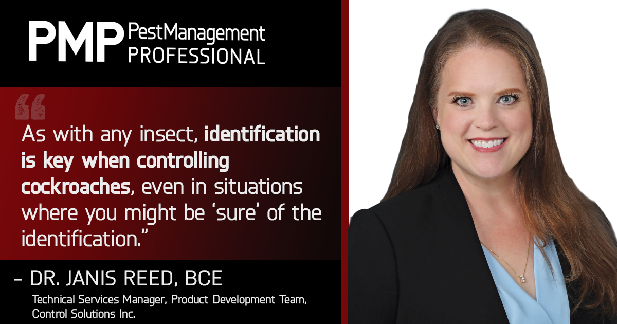 GRAPHIC: PMP STAFF; HEADSHOT: DR. JANIS REED, BCE