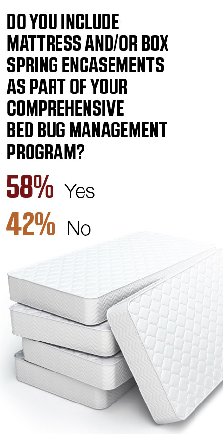 ART: BET_NOIRE/ISTOCK / GETTY IMAGES PLUS (MATTRESSES); SOURCE: PMP ONLINE SURVEY CONDUCTED JANUARY-AUGUST 2019