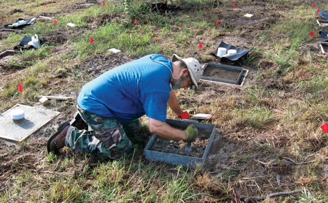 Dr. Shelton works on a groundboard installation. (PHOTO: CRAIG BELL (FPL-4723)/USFS)