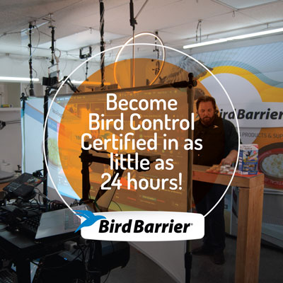 IMAGE: BIRD BARRIER