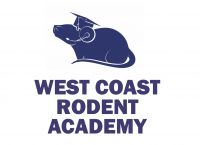 Image: West Coast Rodent Academy