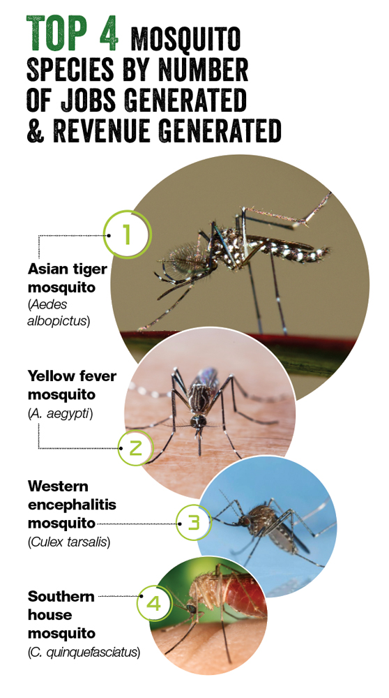 SOURCE: PMP MOSQUITO MANAGEMENT SURVEY CONDUCTED MARCH 2021; PHOTOS: IMNATURE/ISTOCK / GETTY IMAGES PLUS/GETTY IMAGES (1); TEPTONG/ISTOCK / GETTY IMAGES PLUS/GETTY IMAGES (2); JOSEPH BERGER, BUGWOOD.ORG (3); CDC/JIM GATHANY (4)